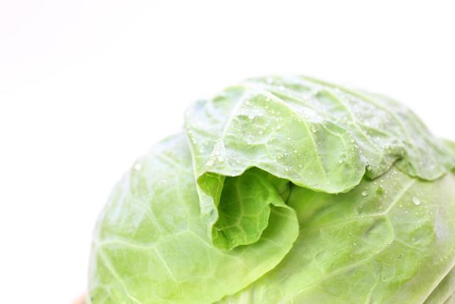 ナイナイアンサー乳酸キャベツダイエットで楽痩せ!作り方やレシピと成功の秘訣