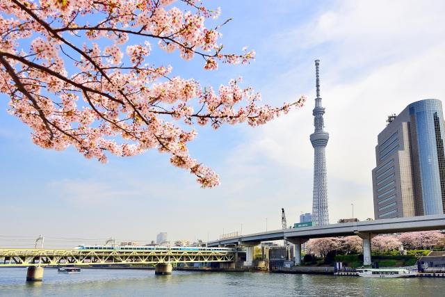 東京の桜の名所ランキング!デートにおすすめの花見スポット5選☆