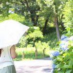 日傘はUVカット100%の完全遮光が良い理由!効果的な色と寿命についても