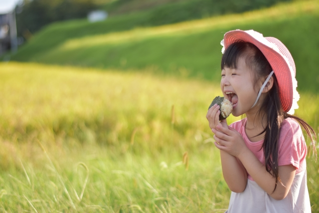 子供のおやつにはおにぎりを!おすすめレシピと玄米おにぎりにも挑戦!