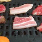 宮崎県都農町のふるさと納税 宮崎和牛と豚の焼肉セットを食レポ!味やボリュームは?