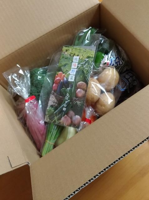 高知県奈半利町のふるさと納税 旬の野菜詰め合わせ全4回の中身をご紹介!還元率もすごい!